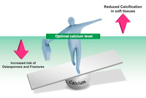 Optimalan-nivo-kalcijuma